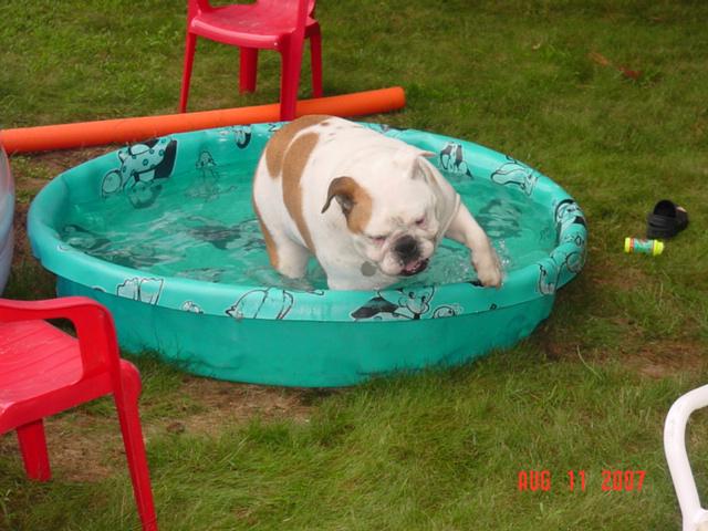 MaxSwimming2[1].jpg