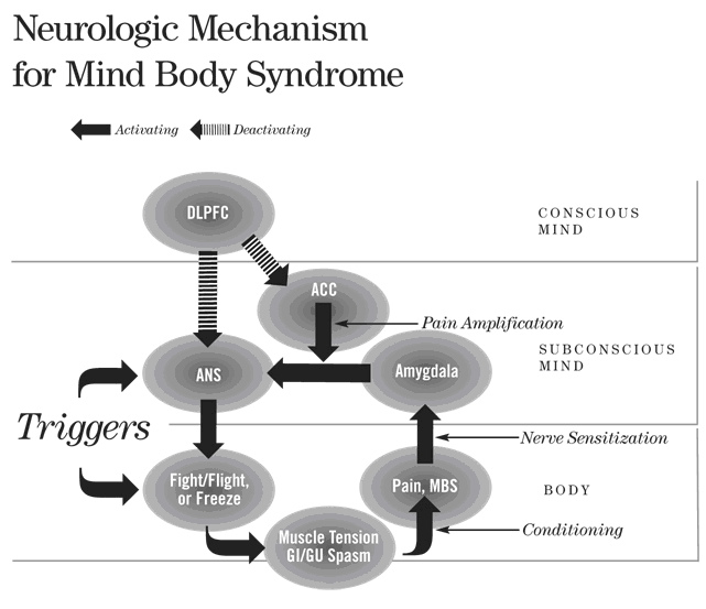An image of Neurologic Mechanism for Mind Body Syndrom