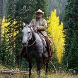 cowboydigger