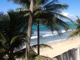 beachbum104