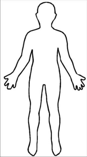 Outline-body.png